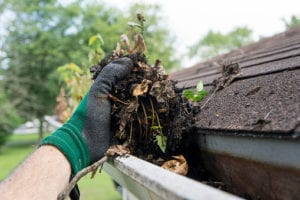 South Jersey gutter cleaning